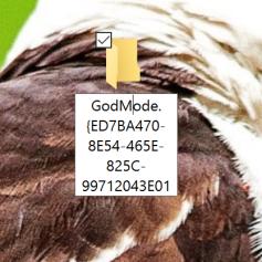 GodMode: Folder